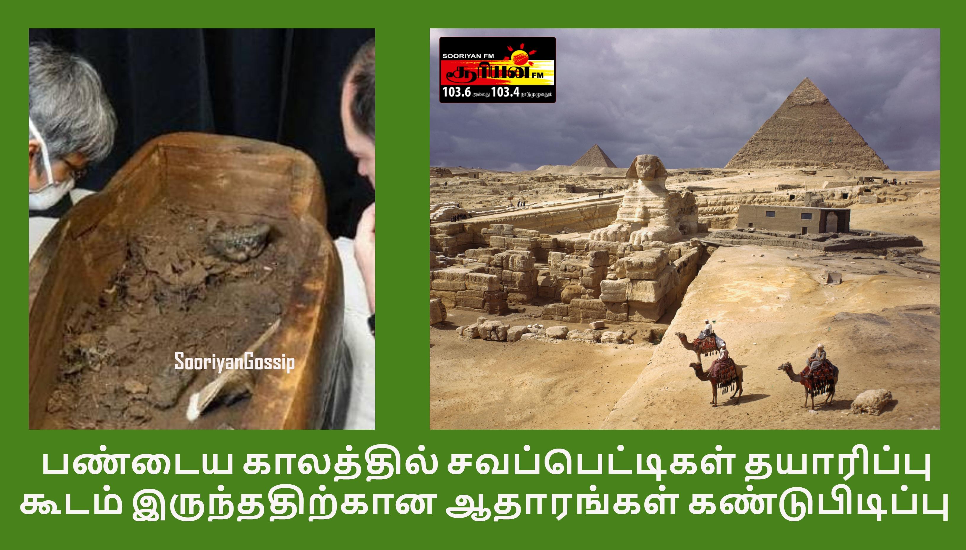 பண்டைய காலத்தில் சவப்பெட்டிகள் தயாரிப்பு கூடம் இருந்ததிற்கான ஆதாரங்கள் கண்டுபிடிப்பு