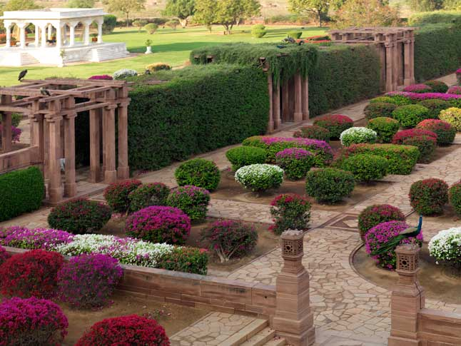 உலகின் மிகச் சிறந்த ஹோட்டல் இதுதான்!: அதன் சுவாரஸ்ய பின்னணியும் , மனதை கொள்ளையடிக்கும் படங்களும் Palace Garden